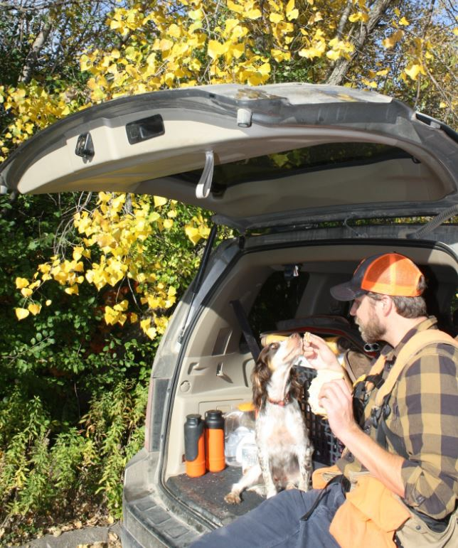 A little snack, even part of your sandwich, wont hut your dog during the midst of a hunting day. But limit her intake.